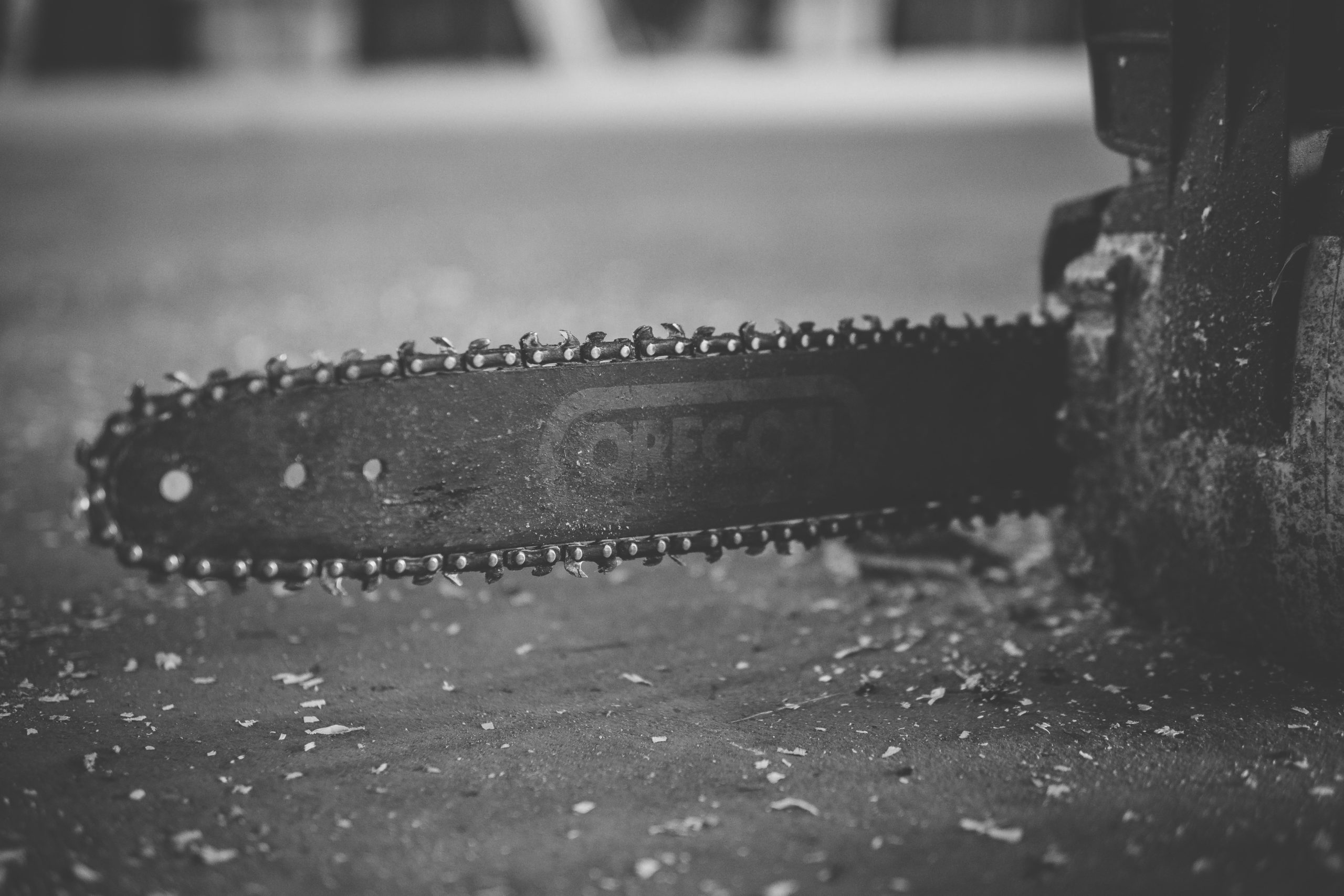 Chainsaw.Course.photo copy